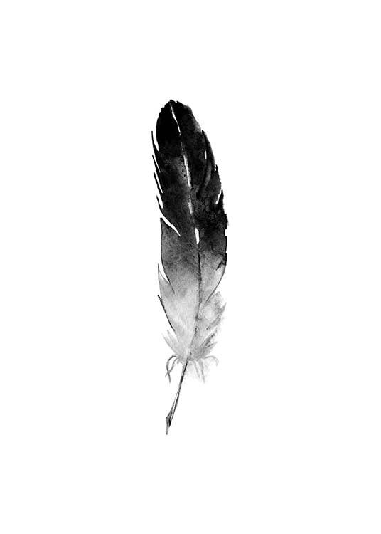poster of aquarelle feather black and white prints
