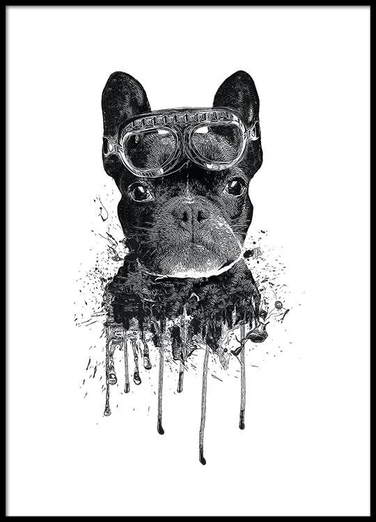 cute children 39 s poster of a dog modern for children and. Black Bedroom Furniture Sets. Home Design Ideas