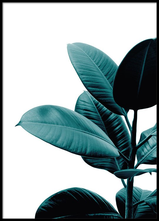 botanical print of a plant poster with a photo desenio. Black Bedroom Furniture Sets. Home Design Ideas