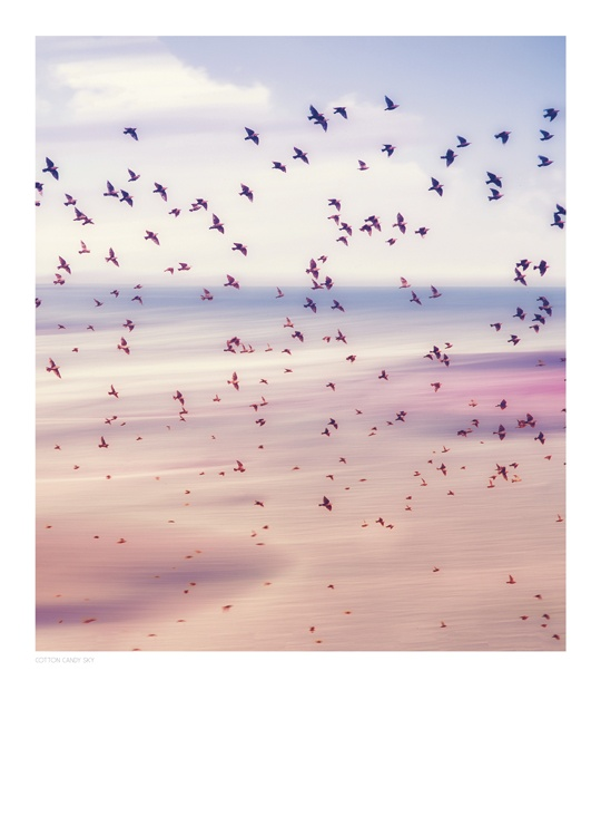 Cotton Candy Sky, Poster / Nature at Desenio AB (8397)