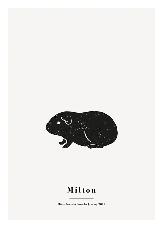 – Black guinea pig with white spots against a light grey background with text at the bottom