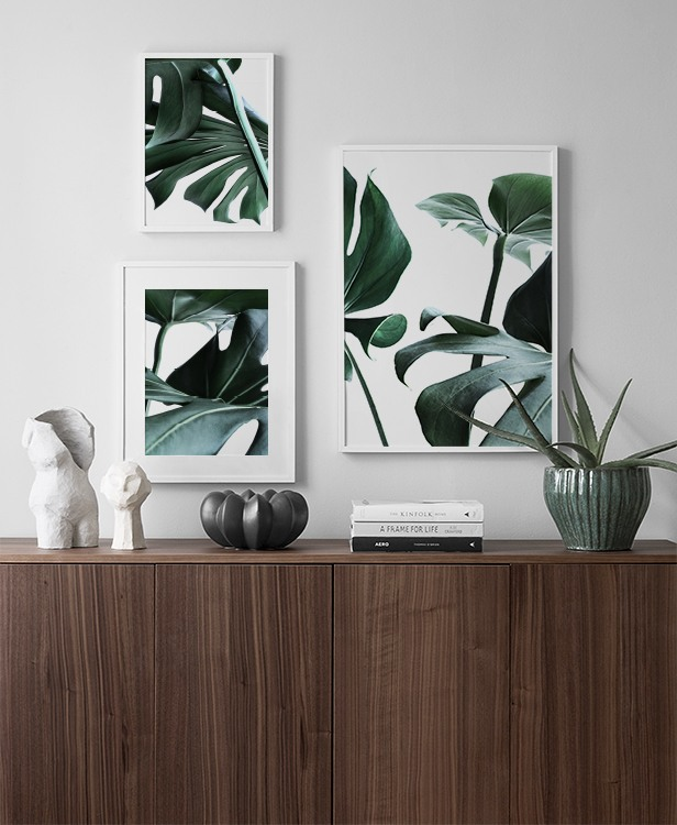 Botanical décor inspiration with cheese plant leaves