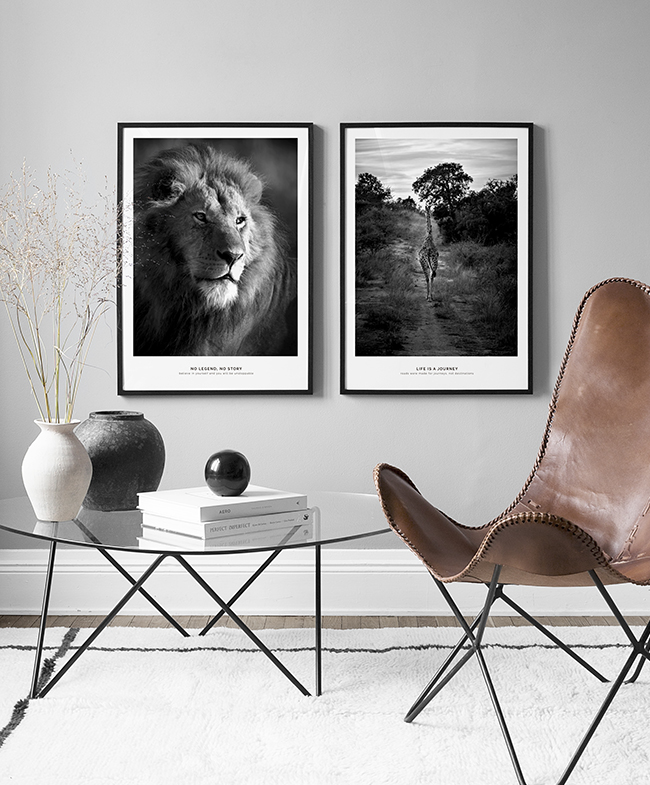 Gallery wall featuring animals