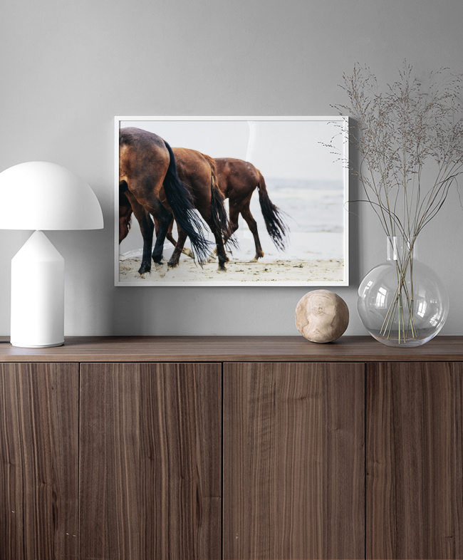 Decorating with animal photos